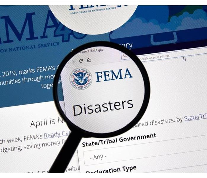 Fema.gov Disasters USA Government home page under magnifying glass.