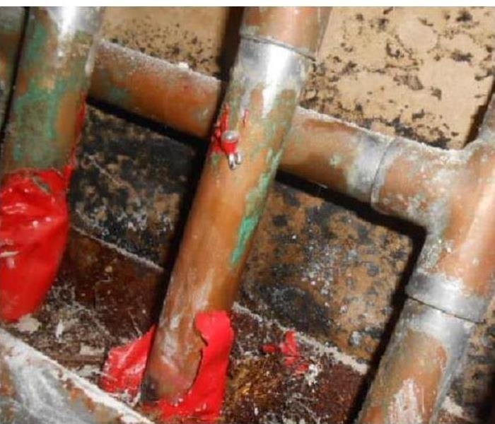 Leaking pipe causes mold growth