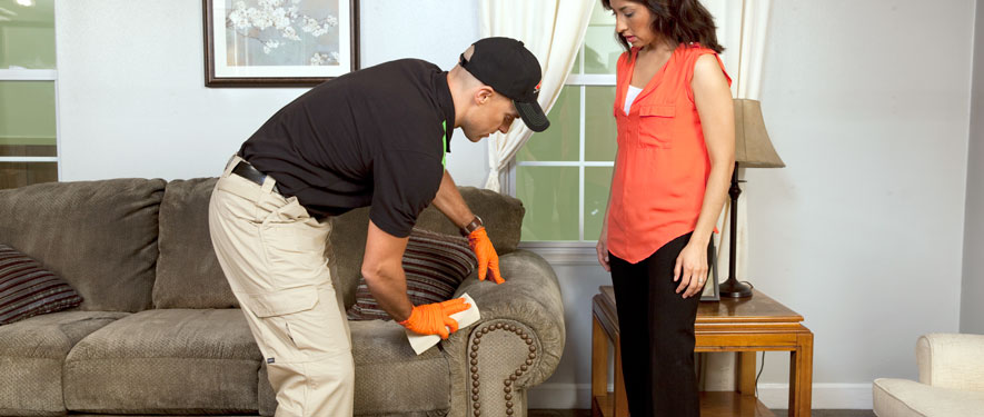 Prescott, AZ carpet upholstery cleaning